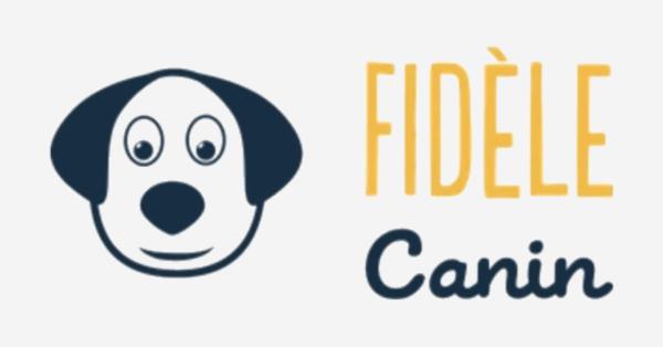 Image Accessoires d'entraînement pour chien