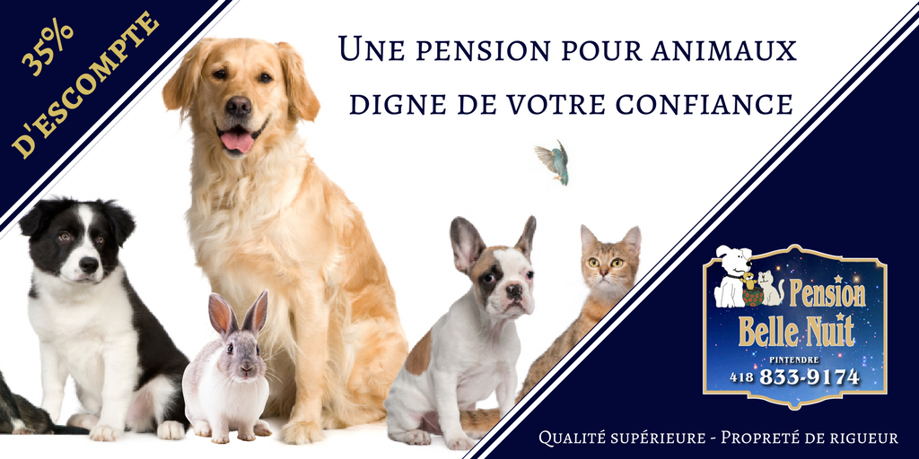 Pension Belle Nuit