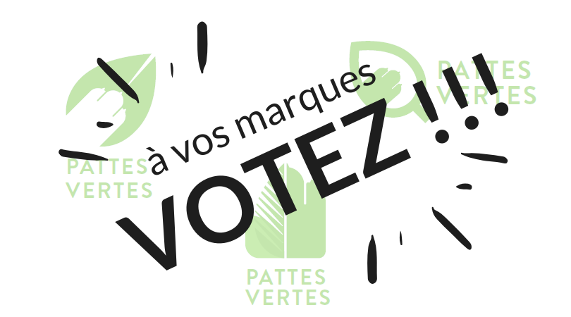 Image Pattes Vertes – Votre choix de logo !