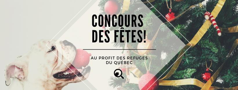 Image Concours des Fêtes – Au profit des refuges