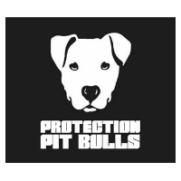 Protection Pit Bulls