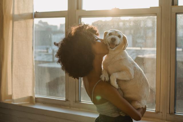 Image La vie après l'adoption